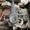Вилочный автопогрузчик/автонавантажувач  Mitsubishi  на 2.5 тонны - Изображение #7, Объявление #1697964